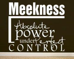 meekness-12-1-2011